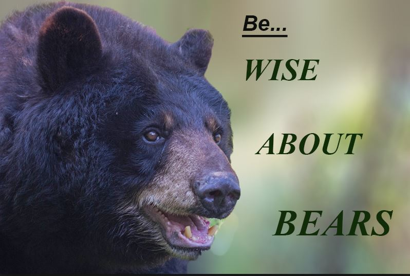be bear wise