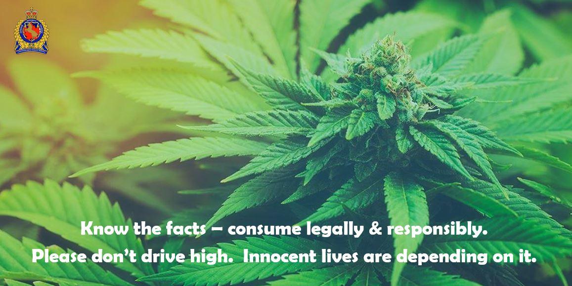 cannabis act