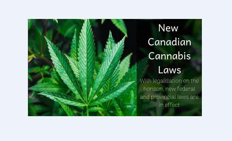 cannabis act slider